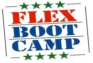 FLEX logo2